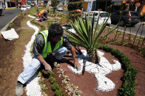 Enlaceveracruz212 xalapa ayuntamiento crea dise os de for Programa diseno de jardines